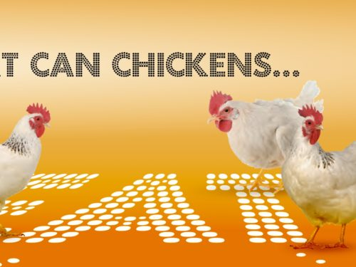 What Can Chickens Eat?